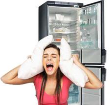 Почему шумит холодильник ликбес от